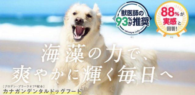 天然の海藻成分からつくられた「プロデン・プラークオフR」が体内からコントロールでき、身体の中から愛犬のキレイをサポート【カナガンデンタルドッグフード】