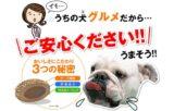 【犬康食・ワン プレミアム】健康に良い和漢植物をギュッと凝縮!