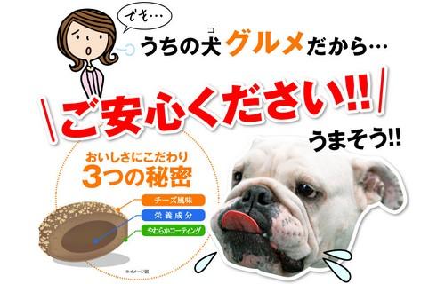 人間と同じ悩みを抱えるワンちゃんのための犬康食【犬康食・ワン プレミアム】