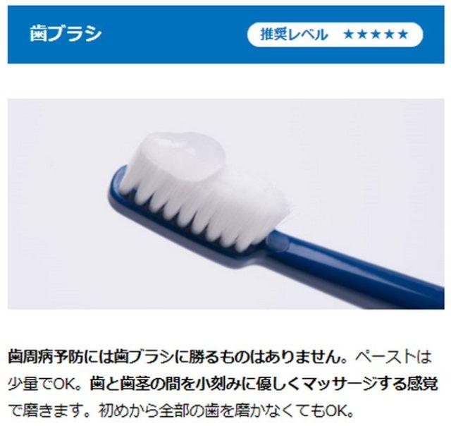 天然成分「バイオミネラル」の優れた洗浄力、還元力で口腔内の菌の繁殖を予防します。歯ブラシを使わずに塗るだけでも、天然成分がお口に広がり口腔内の健康をサポートしますので、歯磨きが苦手な子にもおすすめ【バイオペースト ルース】