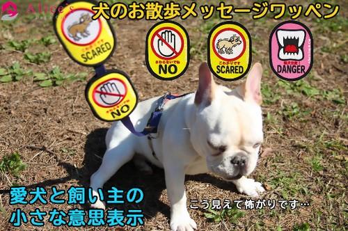 """犬の飼い主様待望のアイデア商品! つけると安心!百""""言""""は一見にしかず。Alice's Dog & Catは犬にも飼い主様にも安心して楽しいお散歩時間になることを願って、愛犬や飼い主様に代わってメッセージを伝える【犬のお散歩メッセージワッペン】"""