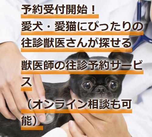 往診してくれる獣医師を探している飼い主さん、飼い主さんを助けたい獣医師の双方で見つけ合える、これまでになかった獣医師の往診予約システムを導入したサービス【ジュイクル】