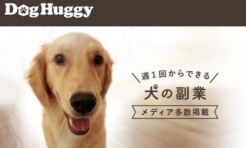 在宅でできる副業として、犬好きな人に対しては犬を預かれる貴重な機会として、犬の仕事に関わりたい人には、在宅でできる犬預かるだけの仕事【DogHuggy(ドッグハギー)】