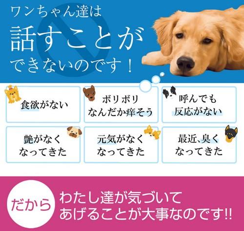 【ペットの贅沢水素水】ペットの為の水素水