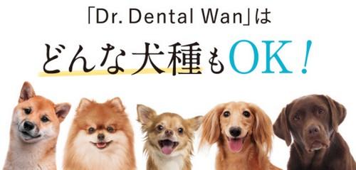 【ドクターデンタルワン】歯磨き嫌いでも楽々ケア!