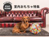 【ダッドウェイオンラインショップ】犬・猫ペット用品