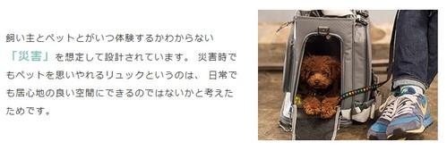 【リュック型ペットキャリー GRAMP(グランプ)】通院から災害まで