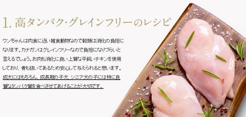 【カナガンドッグフード ウェットタイプ】食いつき抜群ウェットフードが登場