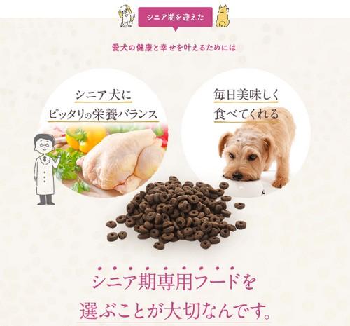 【ピッコロドッグフード】いつまでも健康でいてほしいシニア犬に