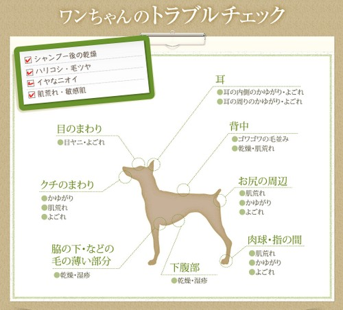 【アヴァンス(AVANCE)】犬の皮膚トラブルに!ワンちゃん用化粧水