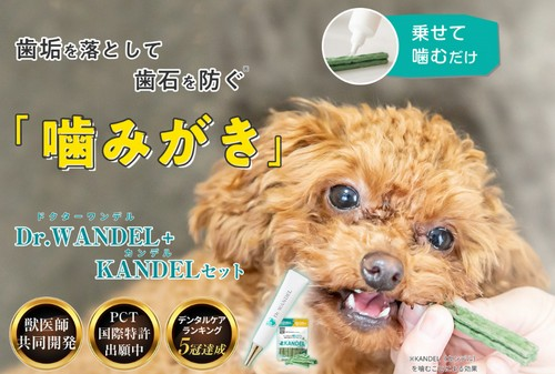 【ドクターワンデル+カンデルセット】ペット用歯周ケアジェル