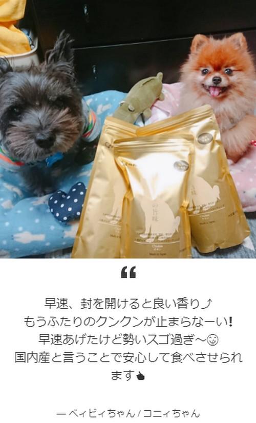 【金の旨味】発売当日2,000食完売!!人も食べられるドッグフード