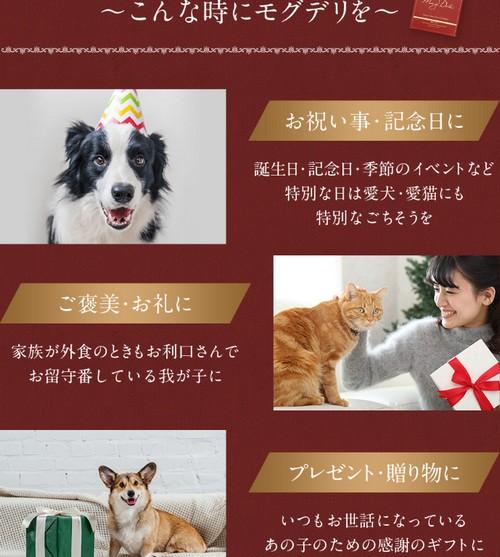 【モグデリ】愛犬・愛猫の魔法のごちそう鹿肉シチュー