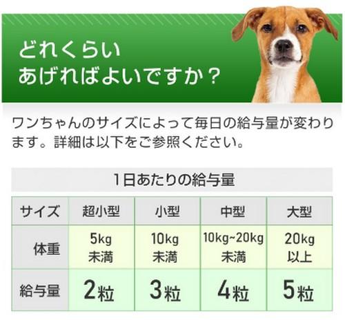 【毎日習慣 サラシア&イヌリン】体重・糖質・血糖値の健康維持に